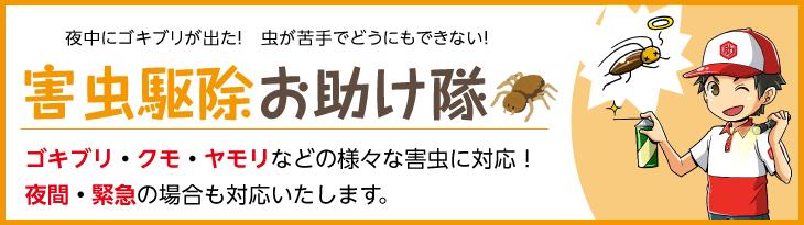 夜中にゴキブリが出た!虫が苦手でどうにもできない!害虫駆除お助け隊 ゴキブリ・クモ・ヤモリなどの様々な害虫に対応!夜間・緊急の場合も対応いたします。